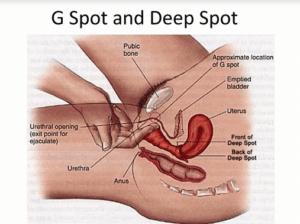 fare sesso bene tecniche di sesso