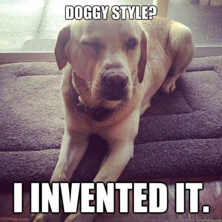 Posizione della Pecorina: 18 Consigli Utili per Farla Impazzire da Dietro con il Doggy Style