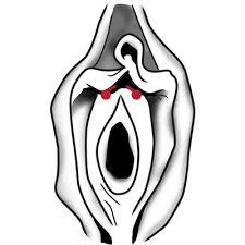 piercing alla vagina